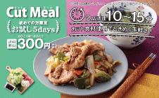 お試し5days|大人気の『カットミール』【1食300円】献立に悩まない5日間♪